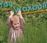 waxball